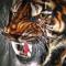 安卓猛虎1.0免授权下载安卓破解版