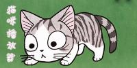 猫咪播放器